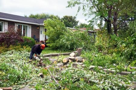 Die Gartensanierung Kosten variieren stark, je nachdem, was gemacht werden muss.